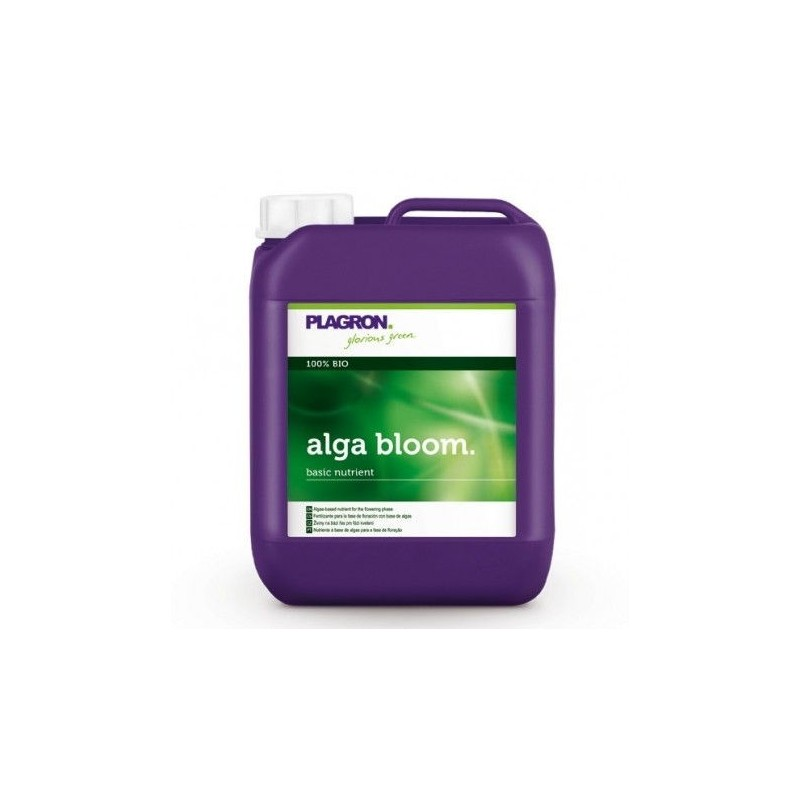 Alga bloom 5 l