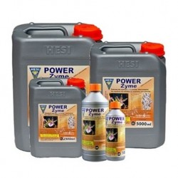 Power Zyme 2500ml