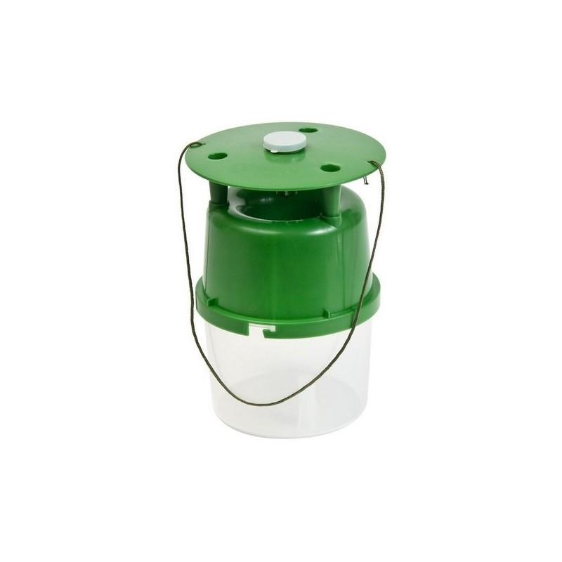 Polillero transparente verde