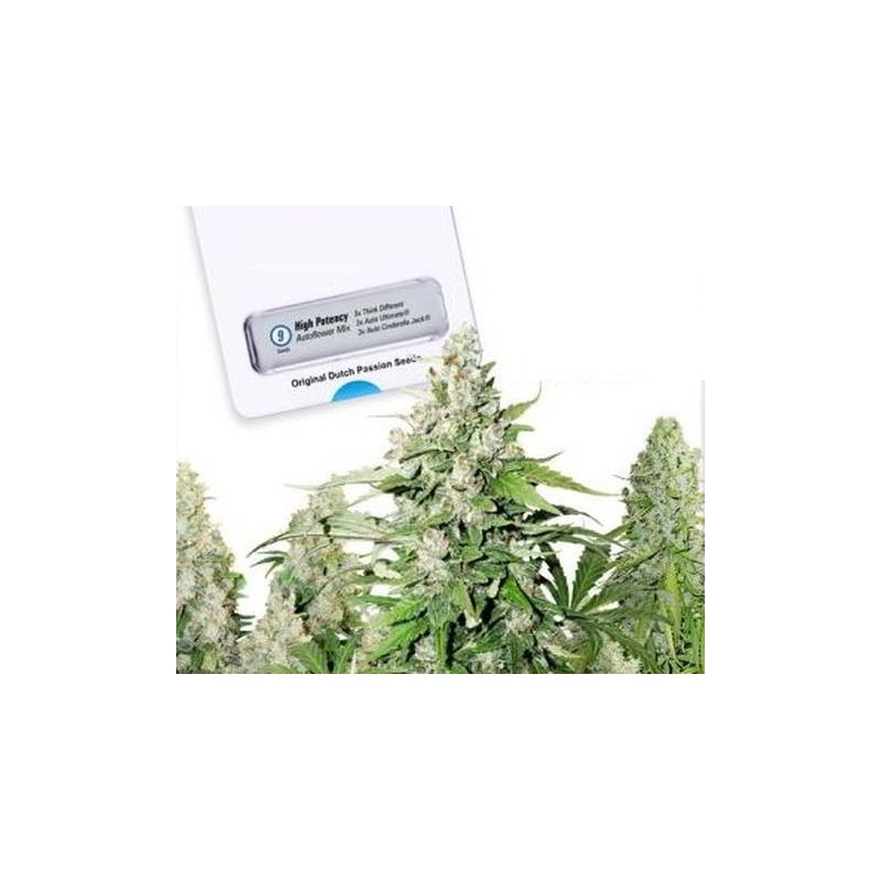 High Potency Autoflowering Mix