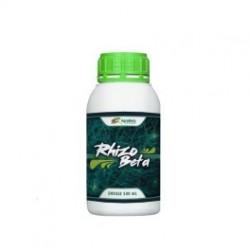 Rhizobeta
