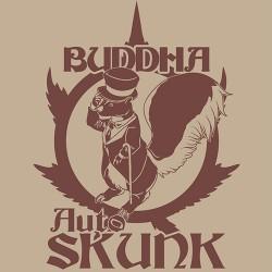 Buddha Classics Autoflorecientes